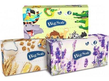 Hygienické kapesníčky - v krabičce, 100ks, dvouvrs