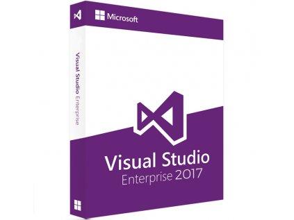 visual studio en17
