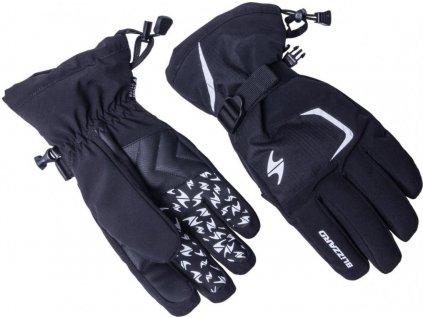 lyžařské rukavice BLIZZARD Reflex, black/silver