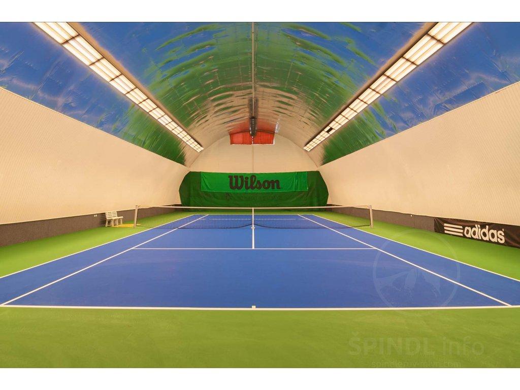 Tenis hala Harmony