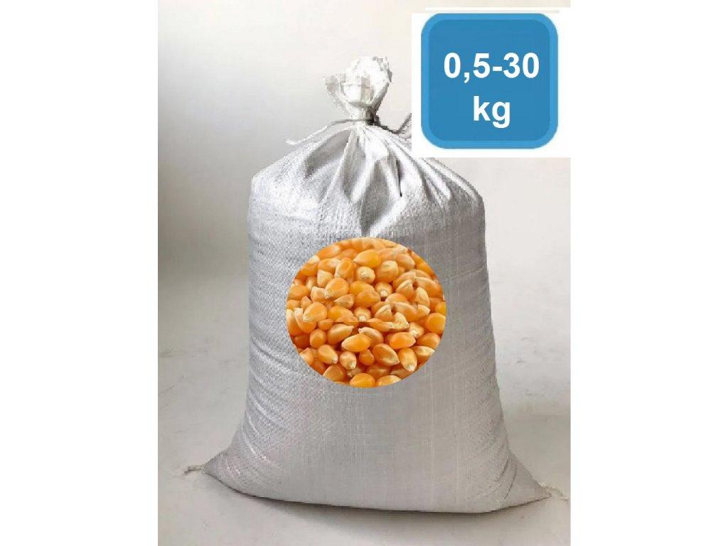 Kukuřice krmná zrno