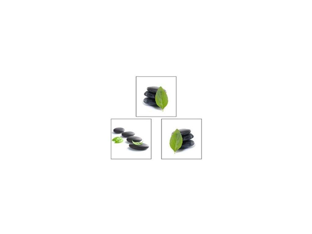 Sada obrazů 3 ks Autronic