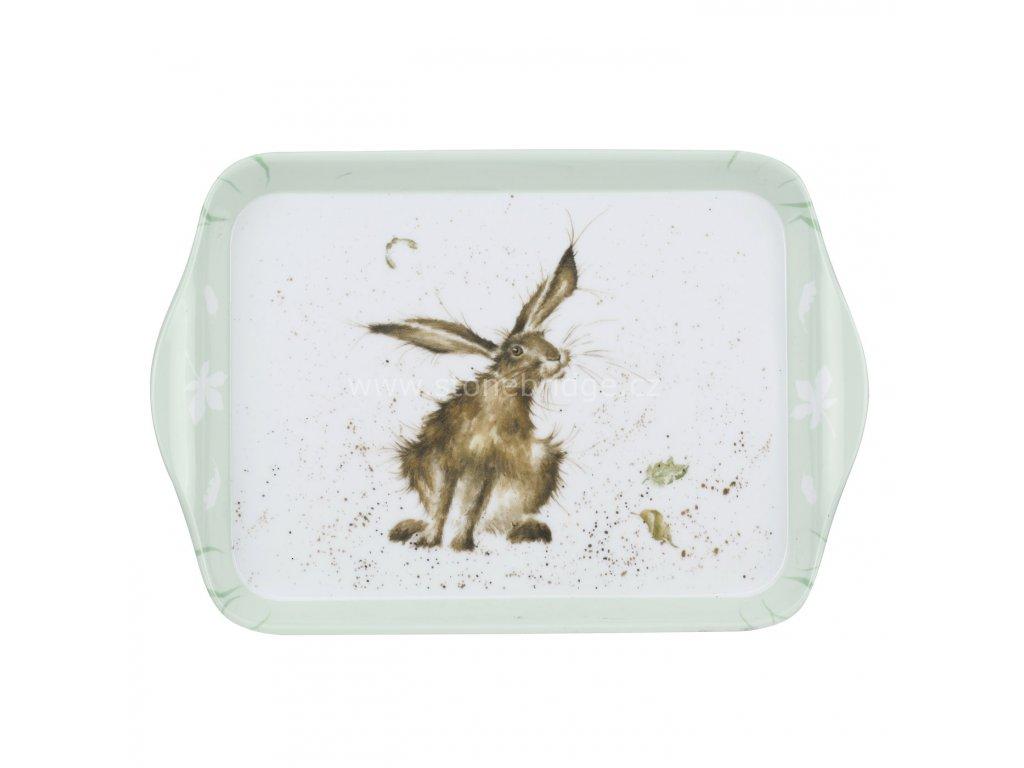 maly hare zajic