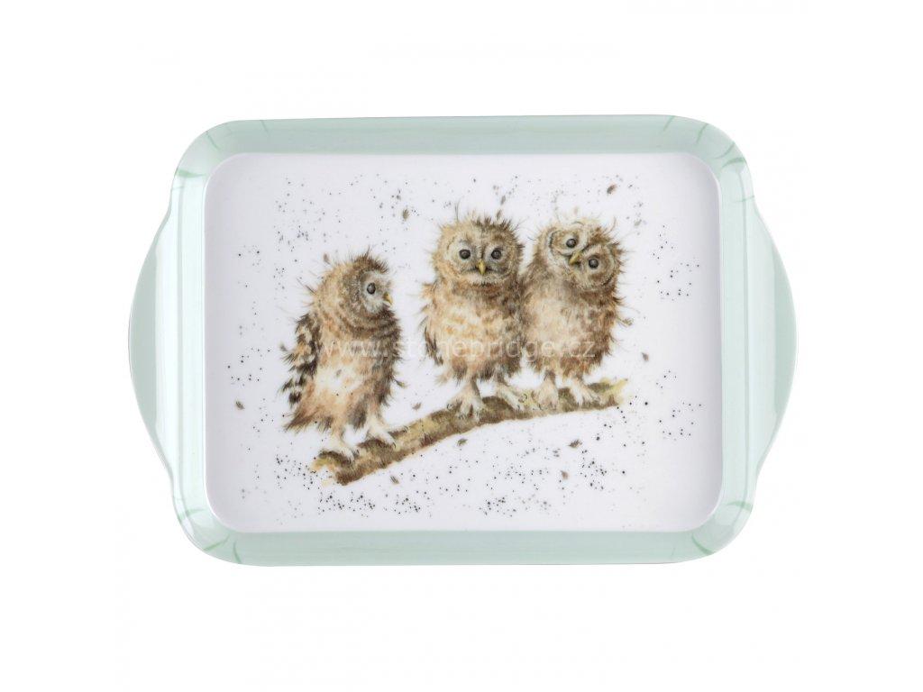 maly owl sovy
