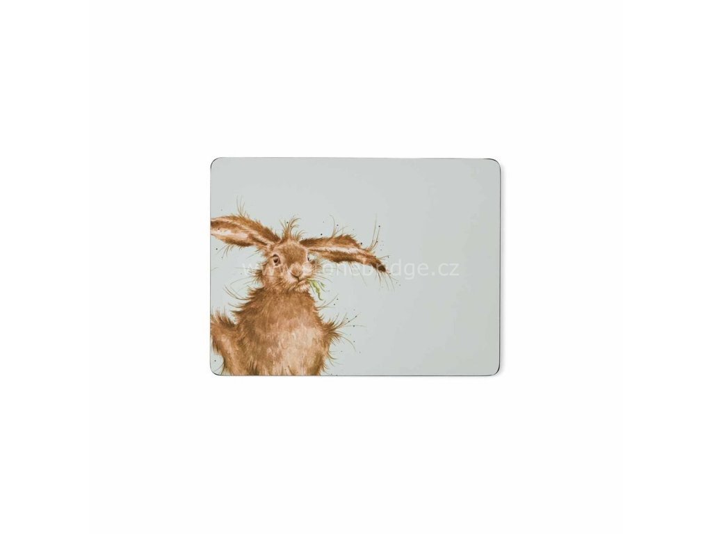 wrendale coloured green hare placemats s 6
