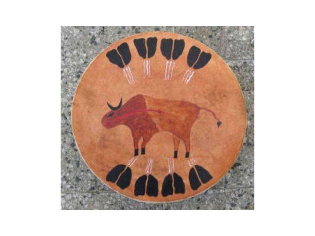 17 bizon