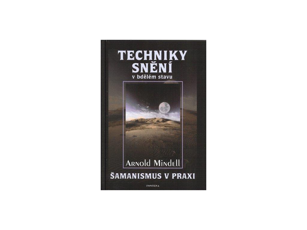 Aronld Mindell: Techniky snění v bdělém stavu - Šamanismus v praxi