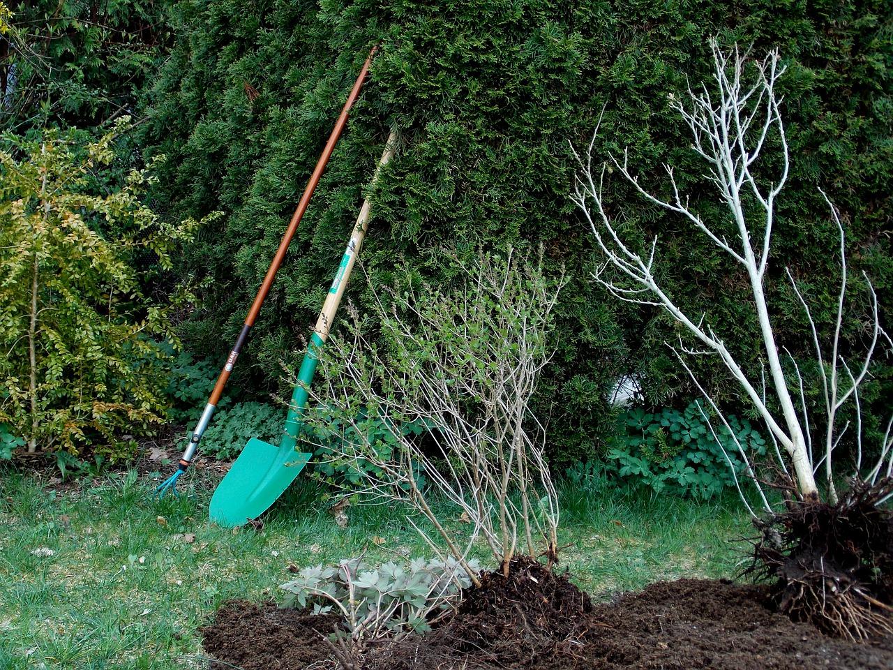 Jak správně pečovat o zahradu po skončení léta