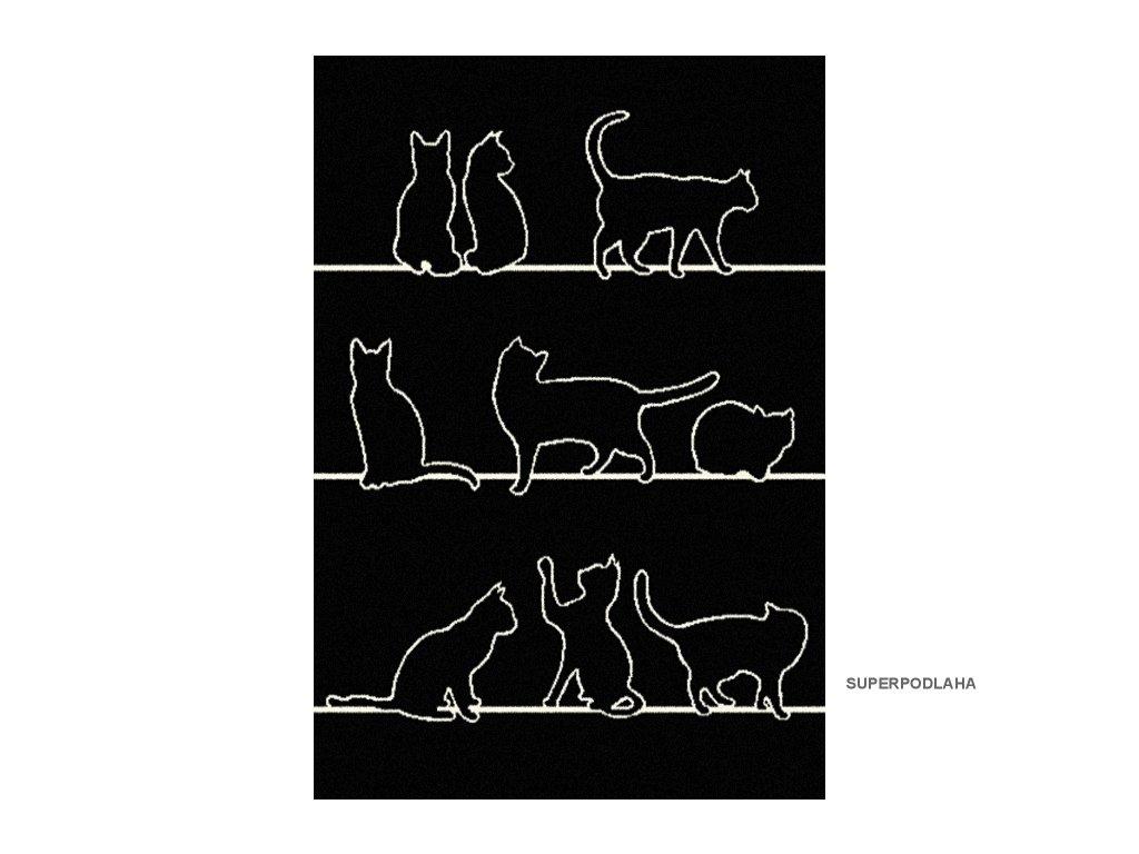 DESIGNER CATS 33322 190