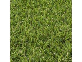 IRISH GRASS 666