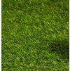 travní koberec 2