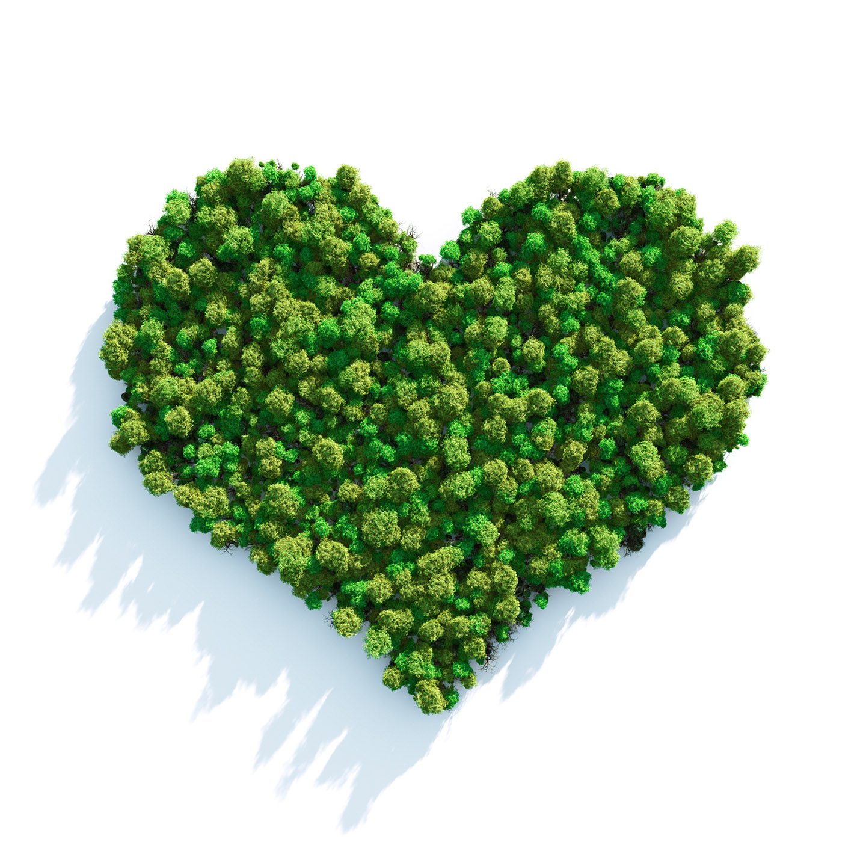 KVĚTEN - Měsíc lásky a srdce
