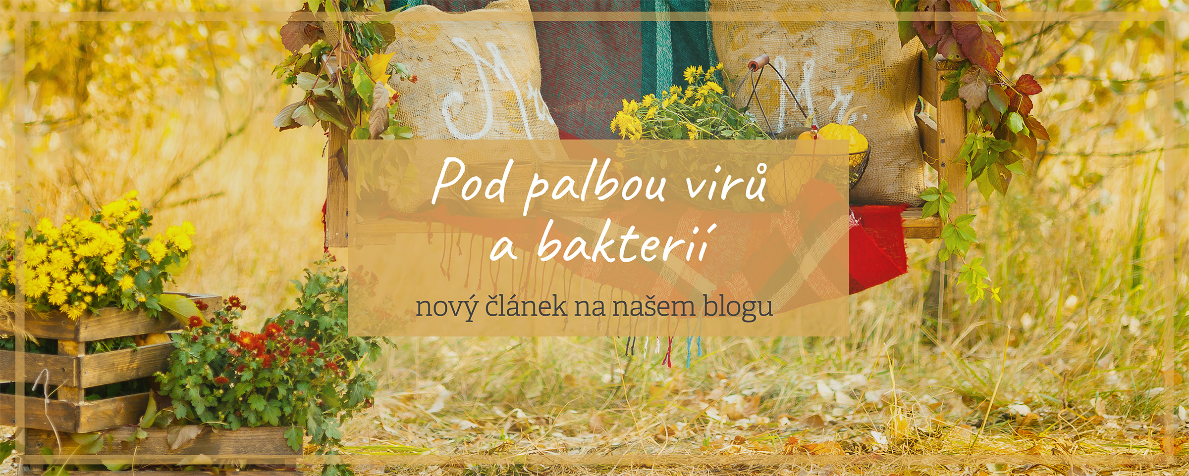 Blog imunita podzim nemoci přírodní péče byliny