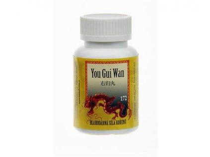 tradicni cinska medicina feng shui you gui wan1