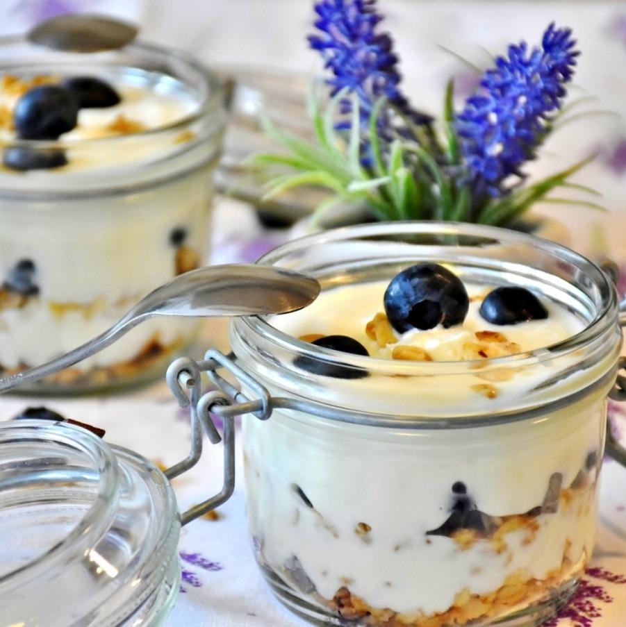 Jogurt | multifunkční tlakový hrnec TESLA