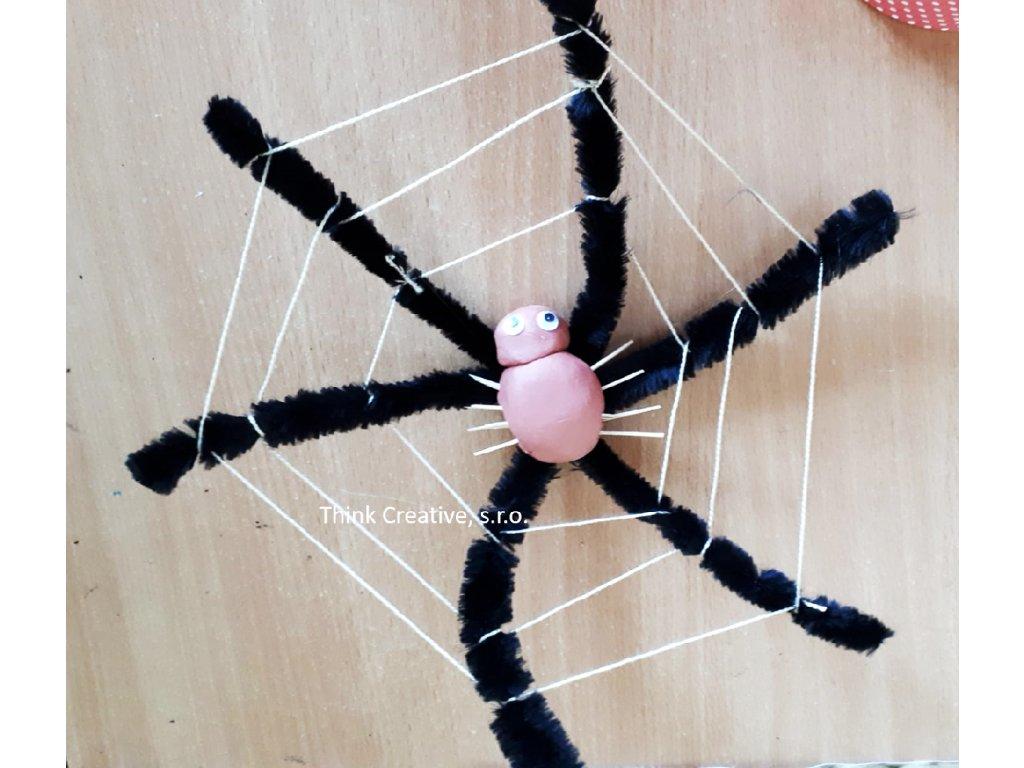 Dratky pavouk
