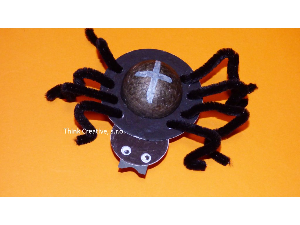 Pavouk kruh