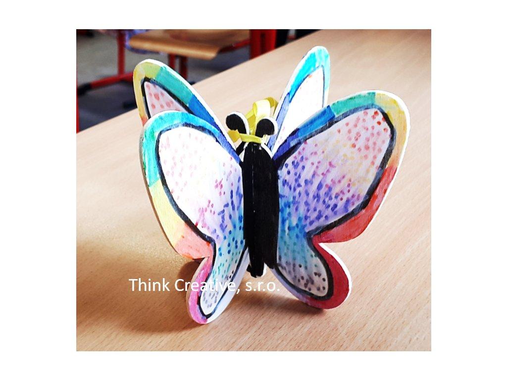 Motyl 3D TC