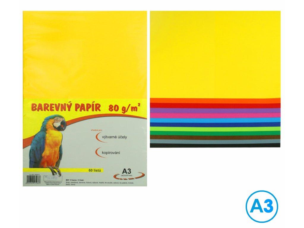 papir barevny 60 listuA3