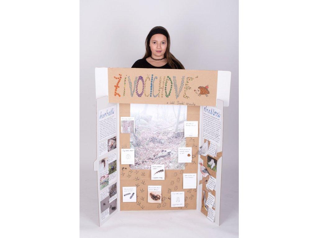 Projektová tabule 120 x 90 cm, hnědo-bílá (10 kusů)