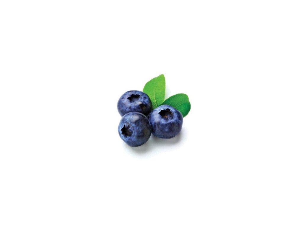 Ovocný gel 1,5 kg - borůvkový