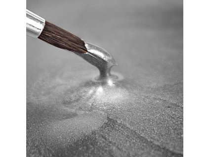 Metallic Food Paint Metallic Light Silver (paint)