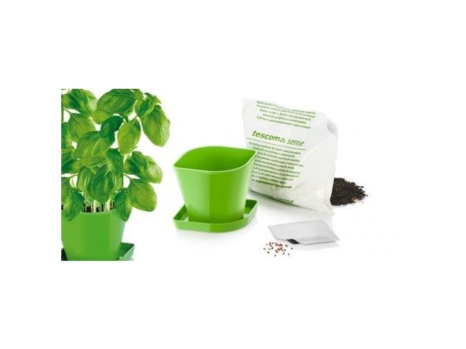 Souprava pro pěstování bylinek SENSE, bazalka