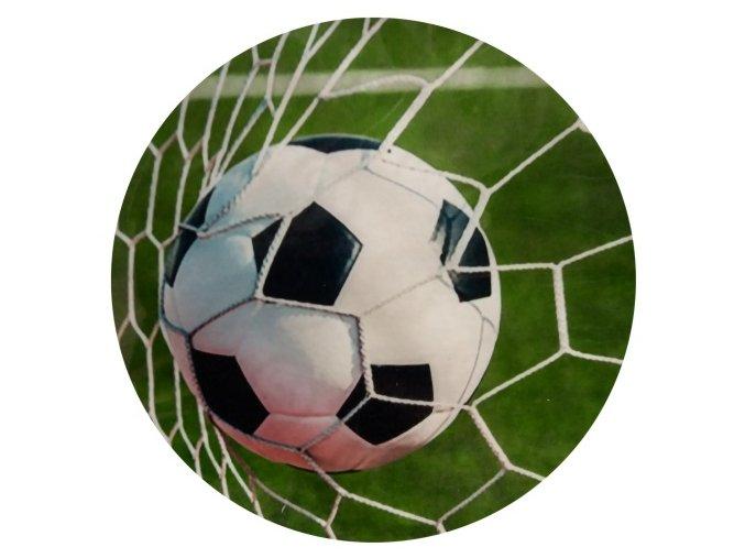 fotbal obrázek