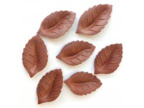 hnede listky jedly papir francie