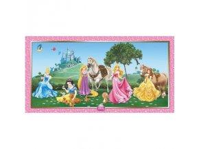 Plakát na zeď - Princess
