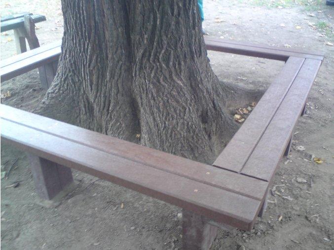 sedenie okolo stromu (7)