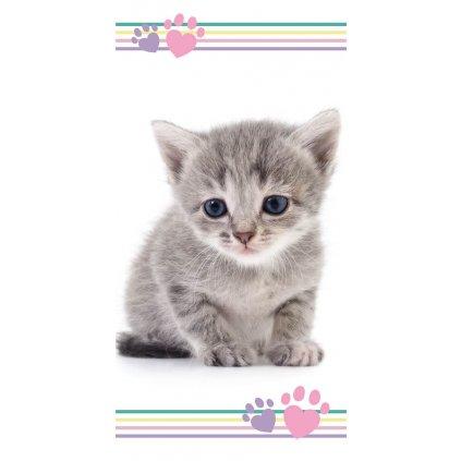 ručník Kitten colours