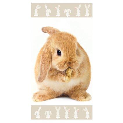ručník Bunny brown