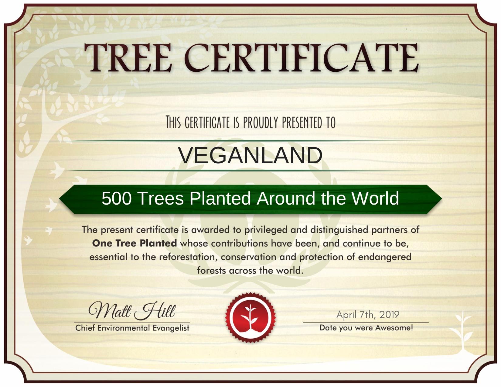 Pomáháme stromům růst!