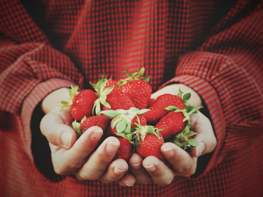 Proč je přechod na veganství nejlepší rozhodnutí, které můžete v novém roce udělat