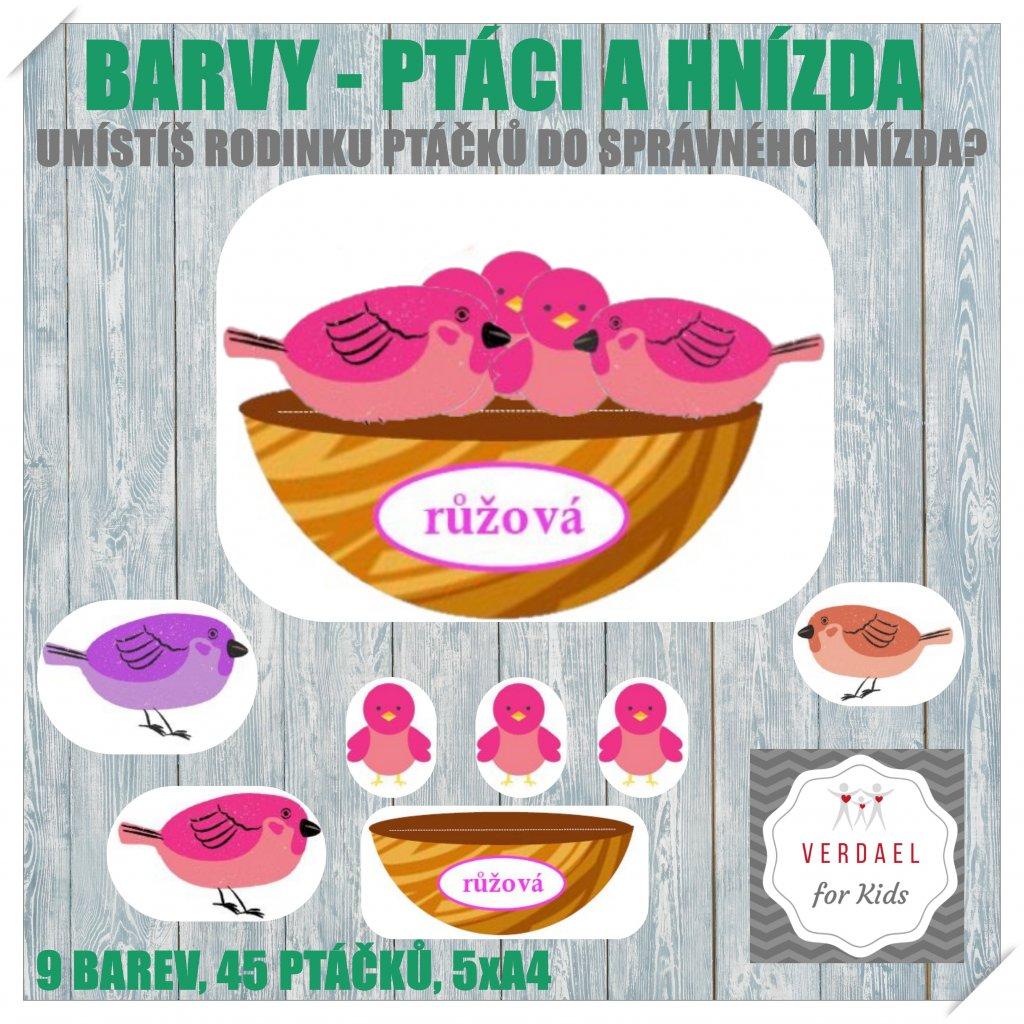 BARVY PTACI