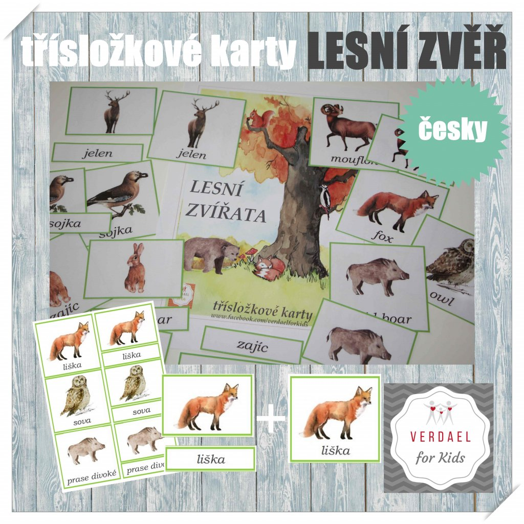 Třísložkové karty lesní zvěř česky