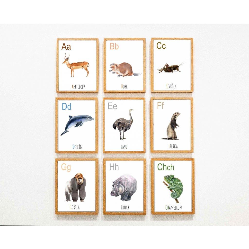 zvířecí abeceda