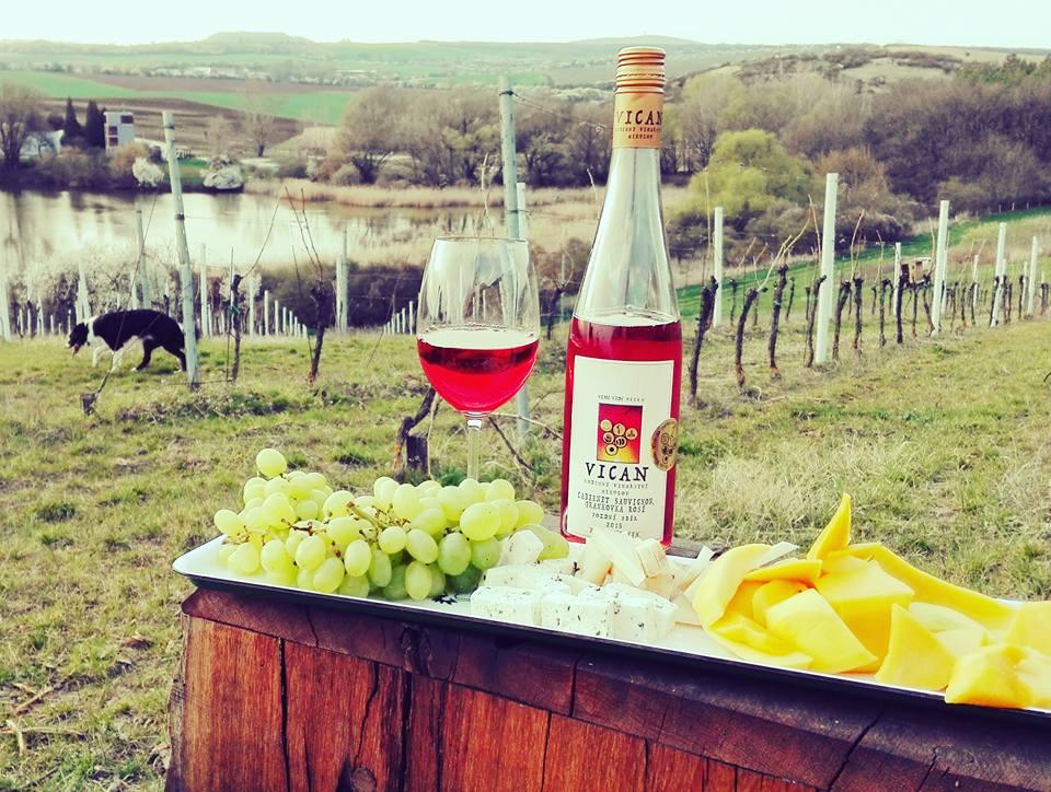 Růžová vína - co víc si v létě přát?