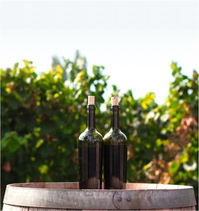 ochutnávky rakouských vín