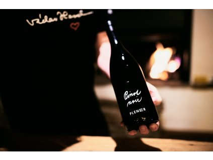 Pinot noir 2018 - NOVINKA