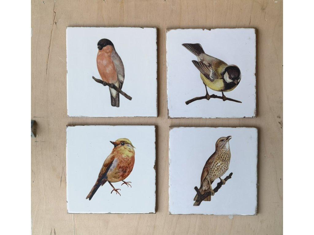 obklad.dekor ptacci forli 15x15 vinciobklady