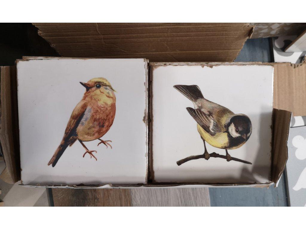 obklad.dekor ptacci sykorka forli 15x15 vinciobklady