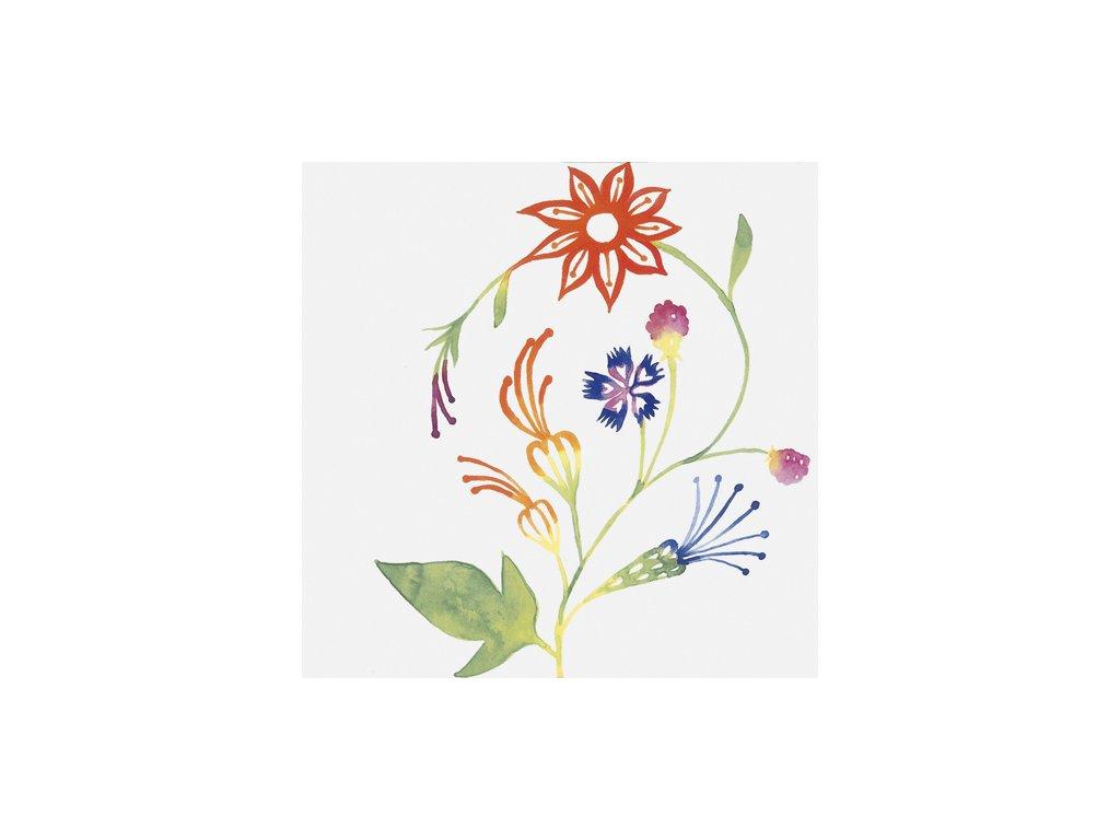 Primavera Colore 1 9