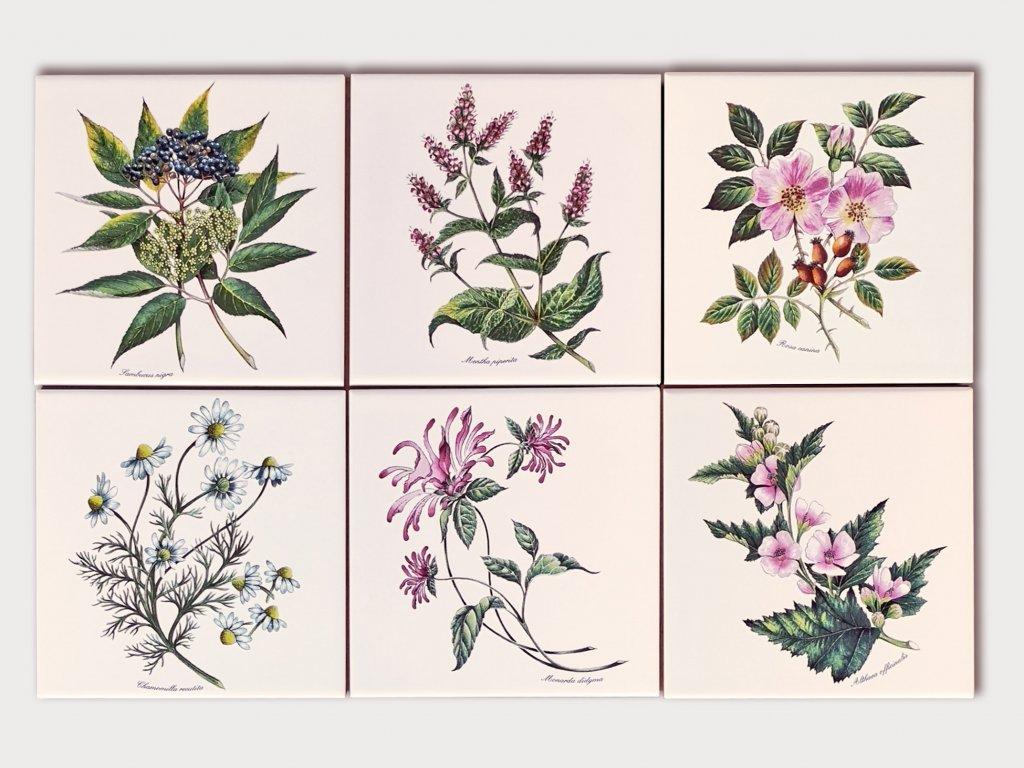obklady bylinky obtisky malovane 02