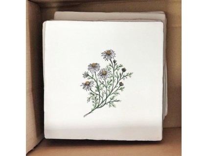 malovane obklady selske eva pomnenky kyticky hermanek bylina