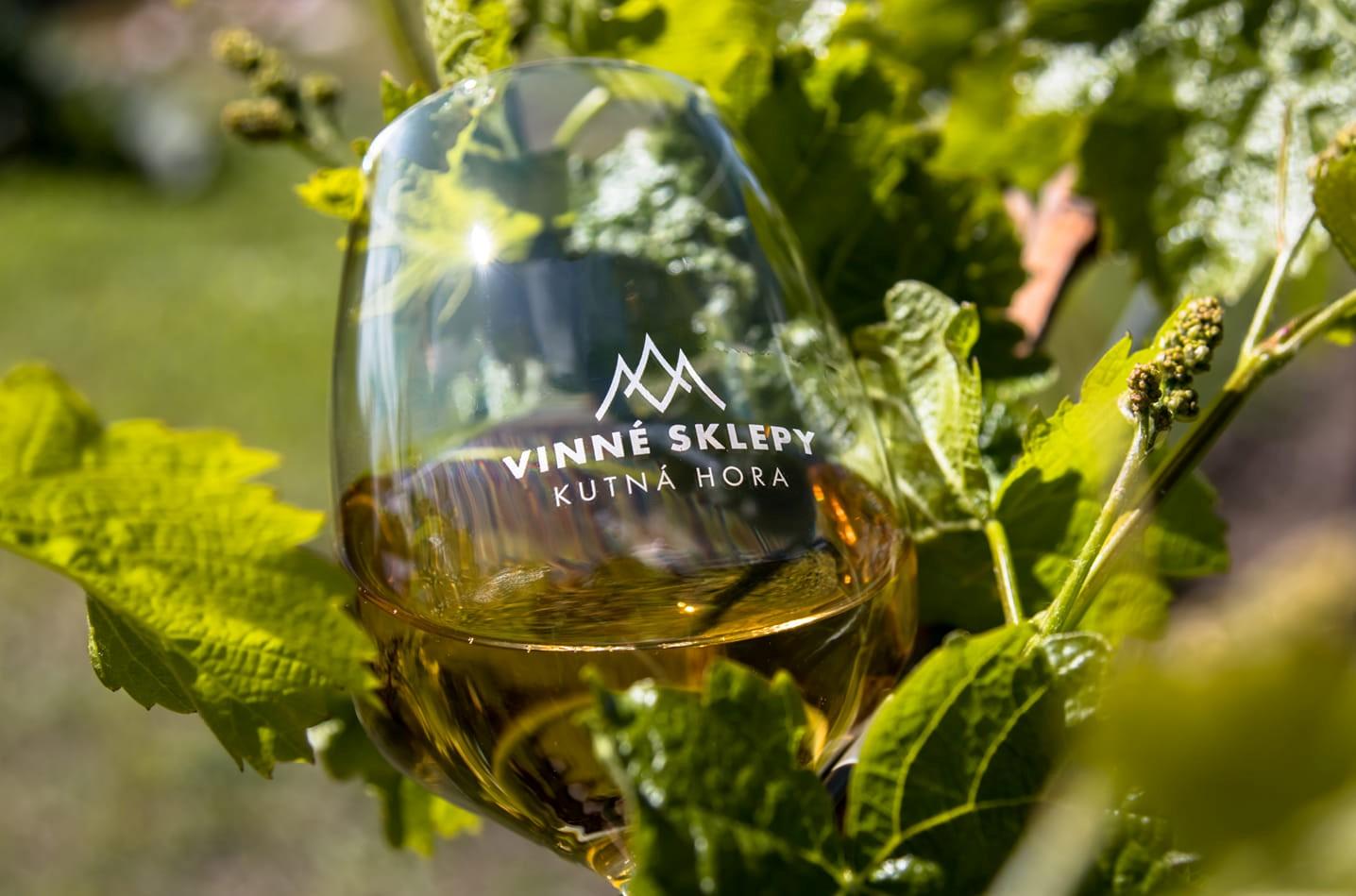 Nabídka biodynamických vín