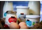 Mléčné výrobky