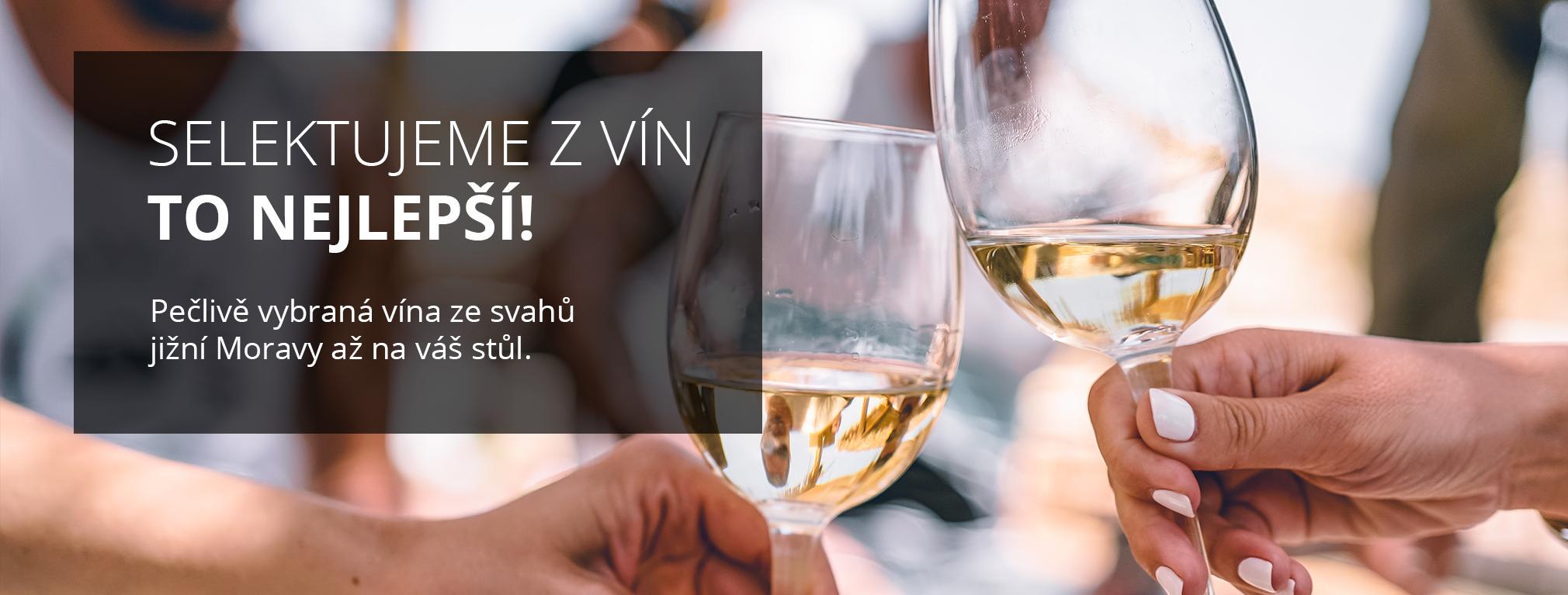 Selektujeme z vín to nejlepší!