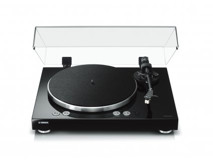 vinyl 500 1
